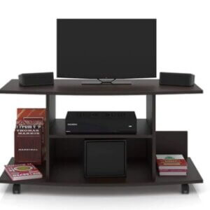 Ithica TV Unit